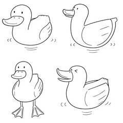 vector set of duck