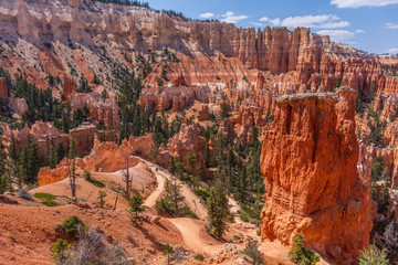 Beautiful landscape. Green pine-trees on rock slopes. Scenic view of the canyon. Bryce Canyon National Park. Utah. USA