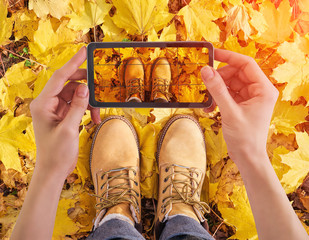 Woman holding smartphone taking photo of yellow leafs