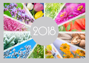 Seasonal Calendar for 2018 year. Quarterly calendar of accountant.