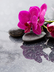 Fond de hotte en verre imprimé Bestsellers Spa background with pink orchid and stone.