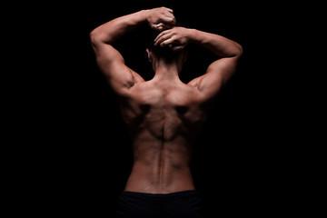 weiblicher trainierter Rücken, Schultern und Arme, Lowkey
