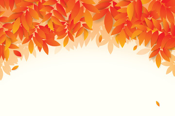 Autumn leaves background. Vector illustration Wall mural