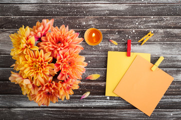 Autumn background with chrysanthemum