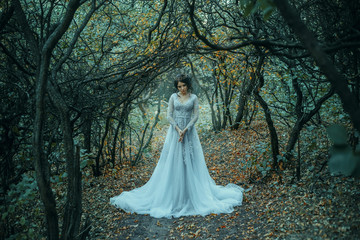 A young princess walks in a beautiful silver dress. The background is grim autumn nature. Artistic Photography