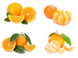 Citrus fruit. Orange,