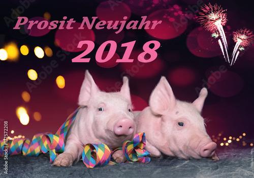silvester neujahr gl cksschweine zum jahreswechsel. Black Bedroom Furniture Sets. Home Design Ideas