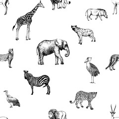 Seamless pattern of hand drawn sketch style African animals and birds. Vector illustration isolated on white background.