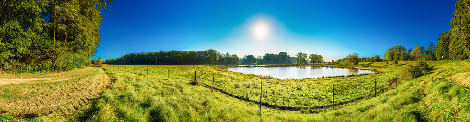 Wall Mural - Beautiful landscape with ponds, meadows and bright sun