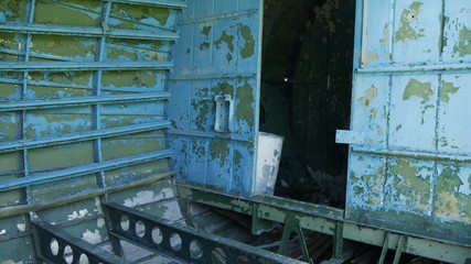 Carcassa di aeroplano da guerra abbandonato nella foresta