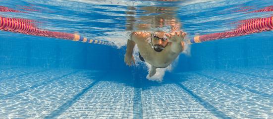 Freistil Kraulen Schwimmen Unterwasser Banner