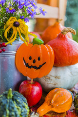Pumpkins and autumn decorations on the wooden terrace. Halloween decoration.
