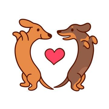 Cute cartoon dachshunds in love