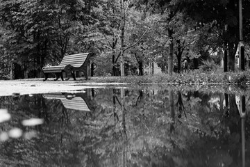 Black and white image of a shop in reflection in a puddle in the park. Rainy autumn weather.