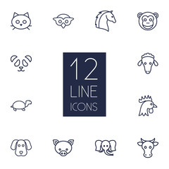 Set Of 12 Alive Outline Icons Set.Collection Of Cock, Cow, Elephant And Other Elements.