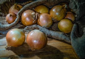 Onion new crop