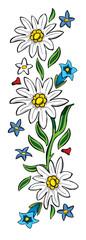 edelweiss 03