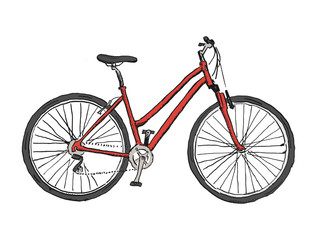 Hand drawn sketch illustration of bicycle. Vector bike illustration