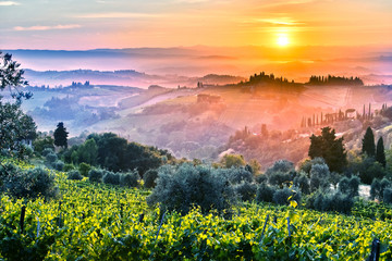 Poster Toscane Landscape view of Tuscany, Italy during sunrise
