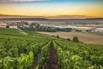 Champagne region in France. A beautiful view. Fototapete