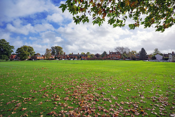 Autumn leaves at Hartley Wintney village cricket ground in Hampshire, UK