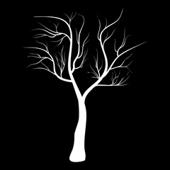 Bare Tree Icon Symbol Design. Vector illustration of tree isolated on black background. White silhouette naked tree for winter composition.