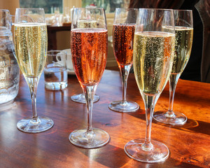 Beautiful Colorful Flight of Champagne in Glasses