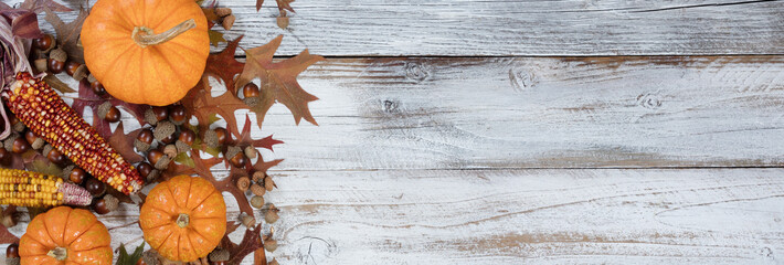 Autumn acorns, pumpkins, corn and leaves on rustic white wood background