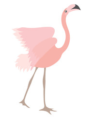 Vector Beautiful Coral Flamingo