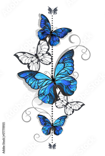 Blue morpho and white butterflies