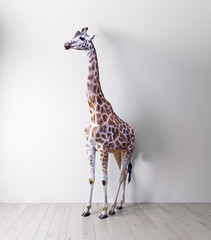 the giraffe in the white room