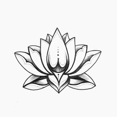 A sketch of a beautiful black and white lotus flower on a white background.