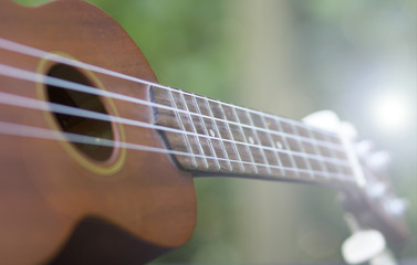 ukulele on nature background,ukulele close up,music concept