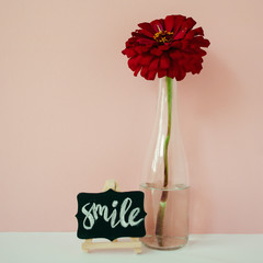 Word Smile written chalk on a mini chalkboard. Floral lifestyle composition in front of pale pink pastel background