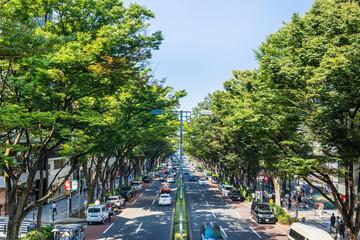 東京 表参道
