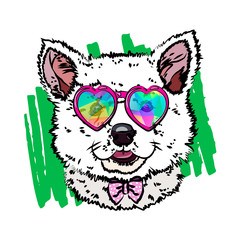 Print on a T-shirt with a dog. Drawing cute puppy husky. Vector illustration eps 10.