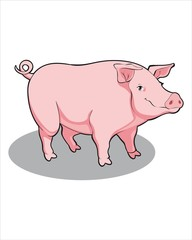 sweet fat pink Pig - vector drawing - isolate white background