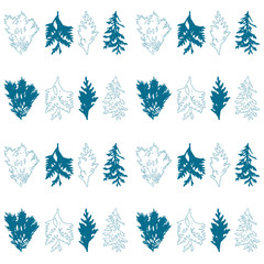 Floral vector seamless pattern with evergreen fur or pine tree twigs and branches on white background.