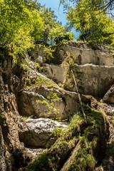 Wilder Bach, Felsen und Bäume