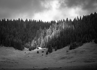 Black and white lanscape photo in Carpathian Mountains.