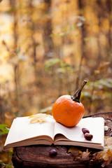 pumpkin - autumn composition with pumpkin and book