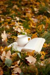kubek, ksiażka, liście, jesień- jesienna kompozycja