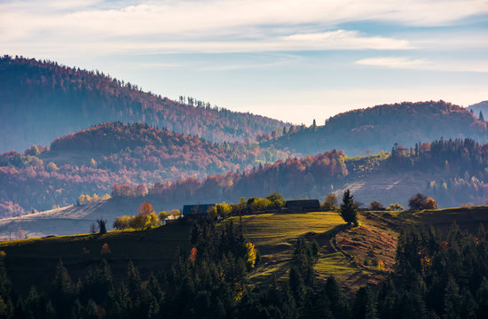 village on top of a grassy knoll in autumn. gorgeous sunrise in mountainous rural area with reddish forest
