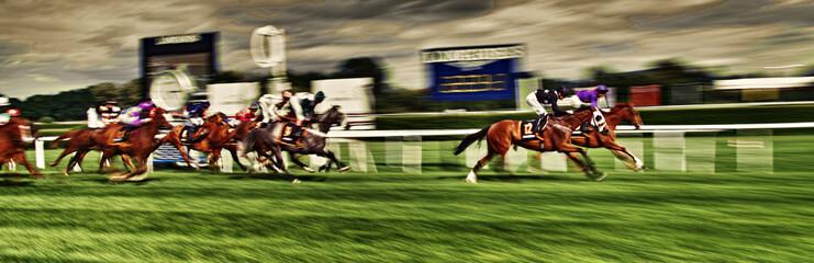 Pferderennen Finish