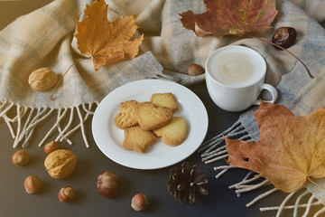 Tea Cup Hot Coffee Cappuccino Autumn Time Cookie Tinted Toned Photo Knitting Scarf Yellow Leaves Chestnuts Black Background Sunlight