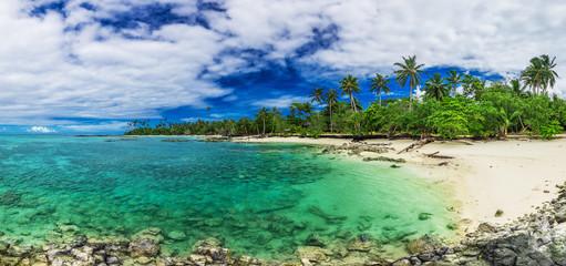 Tropical beach on south side of Upolu, Samoa Island with palm trees Wall mural