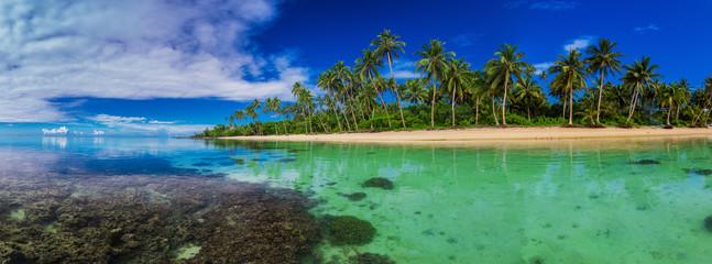 Strand met koraalrif aan de zuidkant van Upolu, Samoa Island met palmbomen