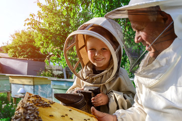 An experienced beekeeper transfers knowledge of beekeeping to a small beekeeper. The concept of transfer of experience.