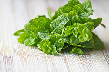Green mint leaf. Bunch of mint leaf on wooden table