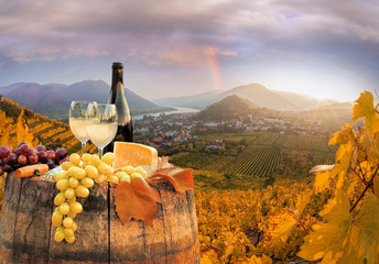 White wine with barrel on famous vineyard in Wachau, Spitz, Austria Wall mural